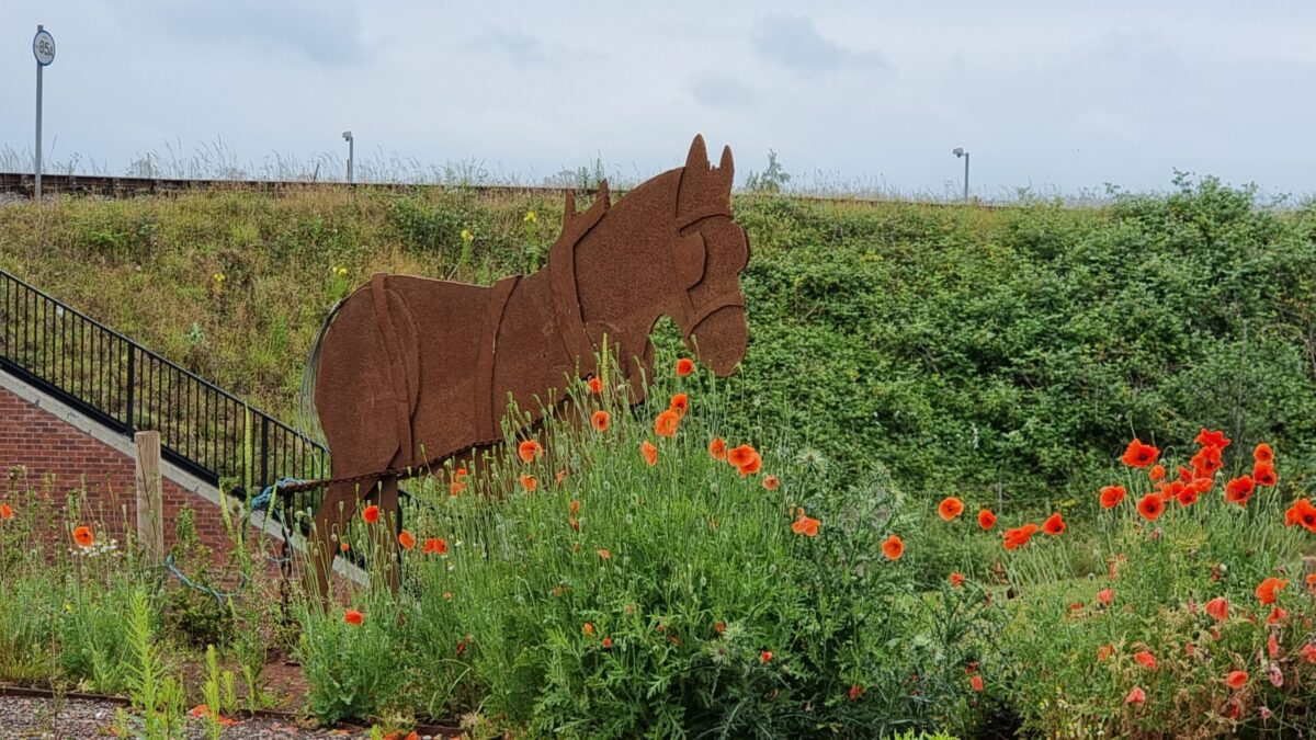 Lichfield fundraising appeal metal horse sculpture