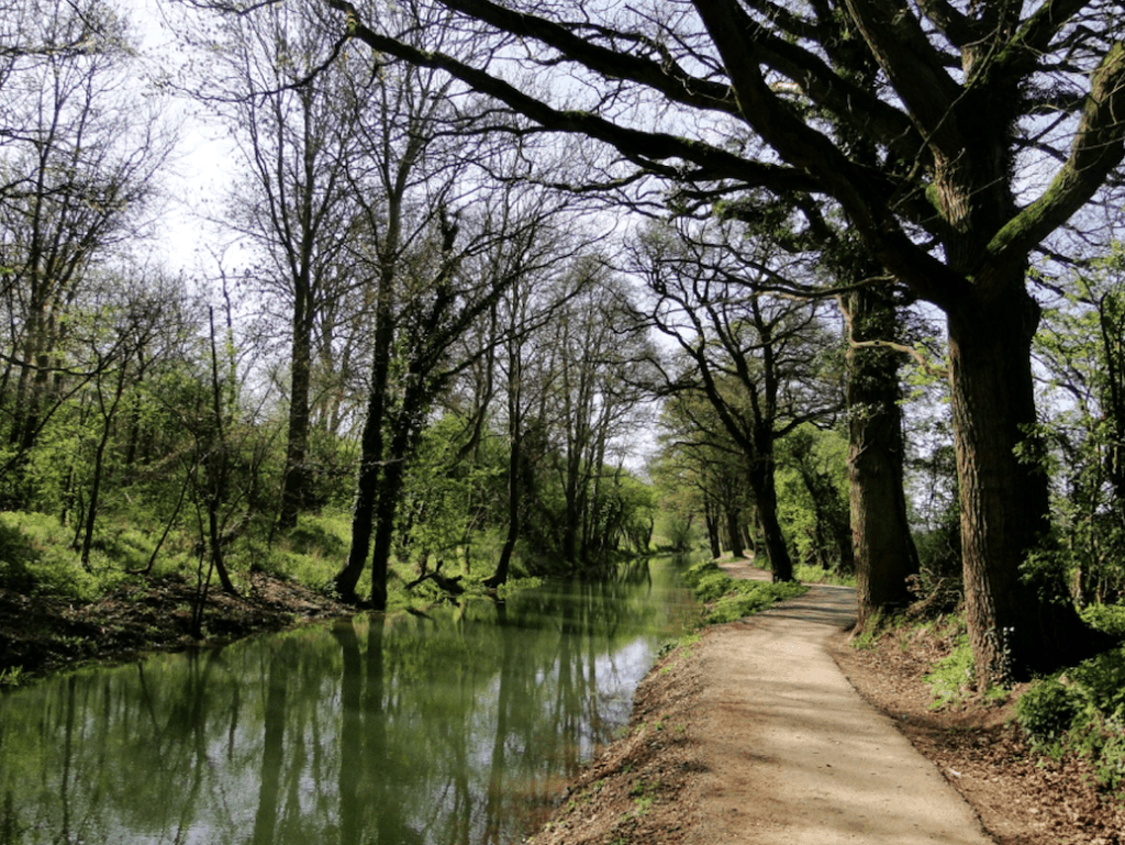 A stretch which has already been restored near Pewsham. PHOTO: ALISON GUY