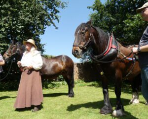 Sue Day giving a demonstration with the boat horses. Photo: Sarah Spencer