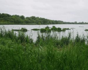 Welsh Harp / Brent reservoir